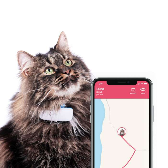 gps-cat-tracker-locator-monitor